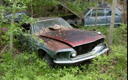 Abandoned In A Field Downtown Matador Texas This 1972 Ford Ranchero Gt Pickup Is What Led To The Discovery Of Closed Salvage Yard On South Side